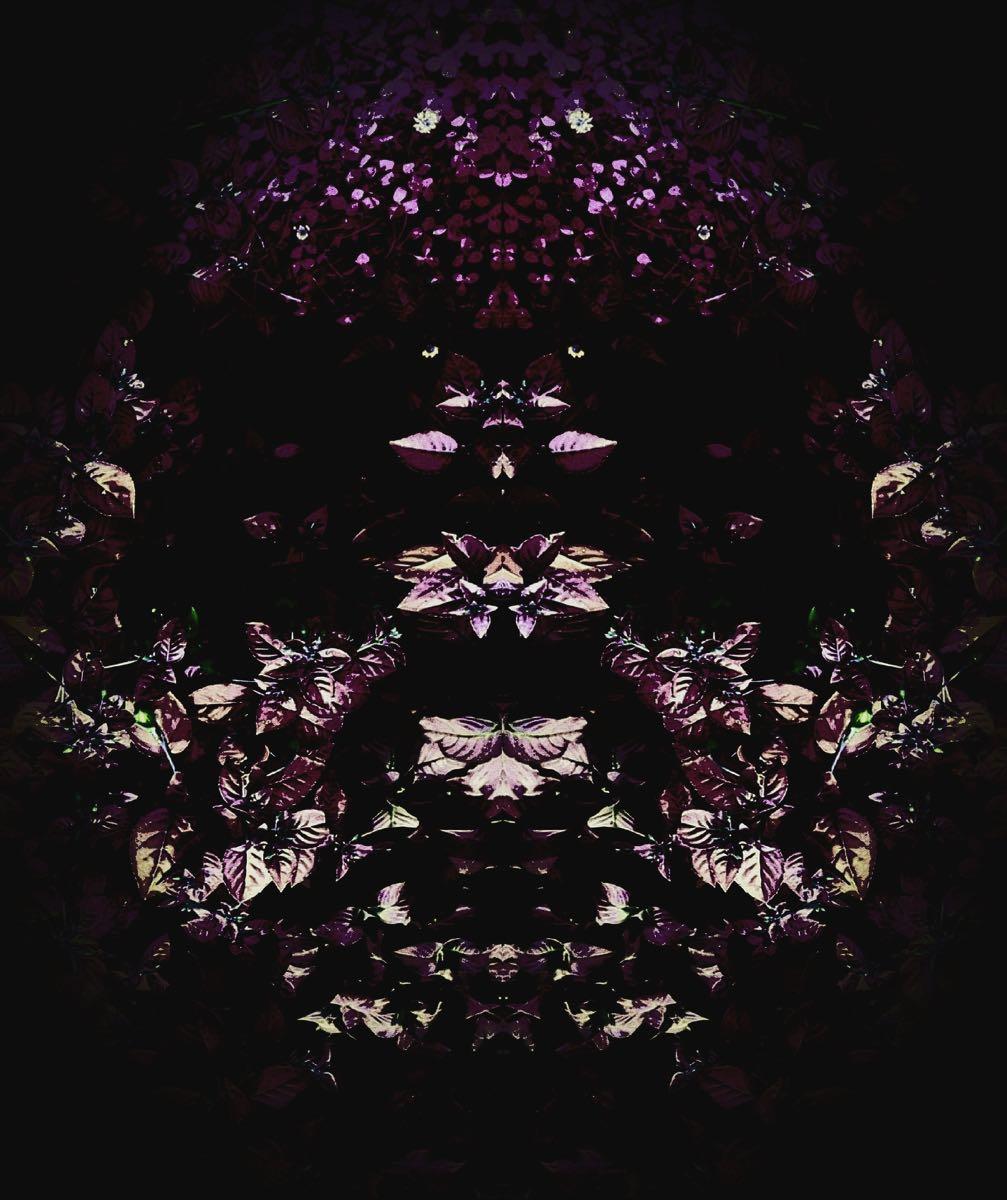 Subconscious - Flower Creatures #5 (40x40 cm) - Print on cotton paper 2020