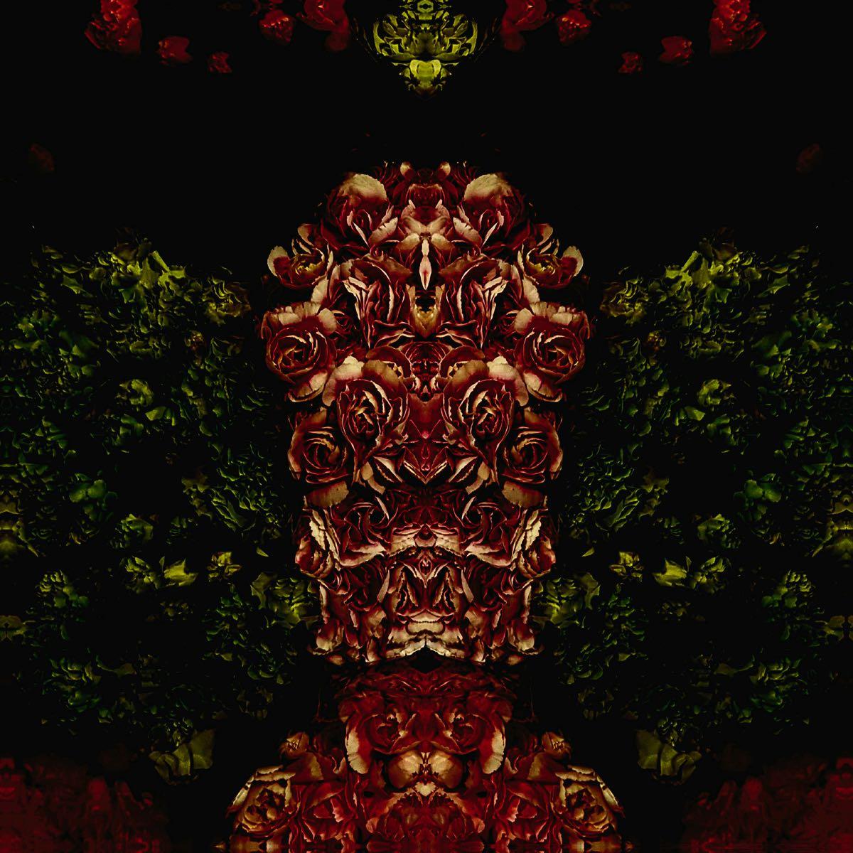 Subconscious - Flower Creatures #8 (40x40 cm) - Print on cotton paper 2020