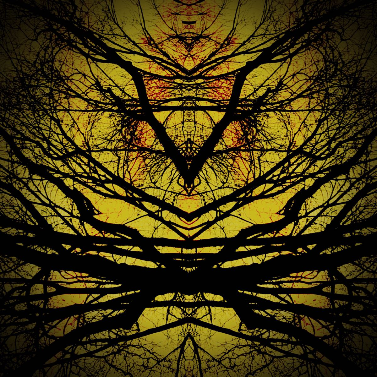 Subconscious - Tree Creatures #1 (40x40 cm) - Print on cotton paper 2020