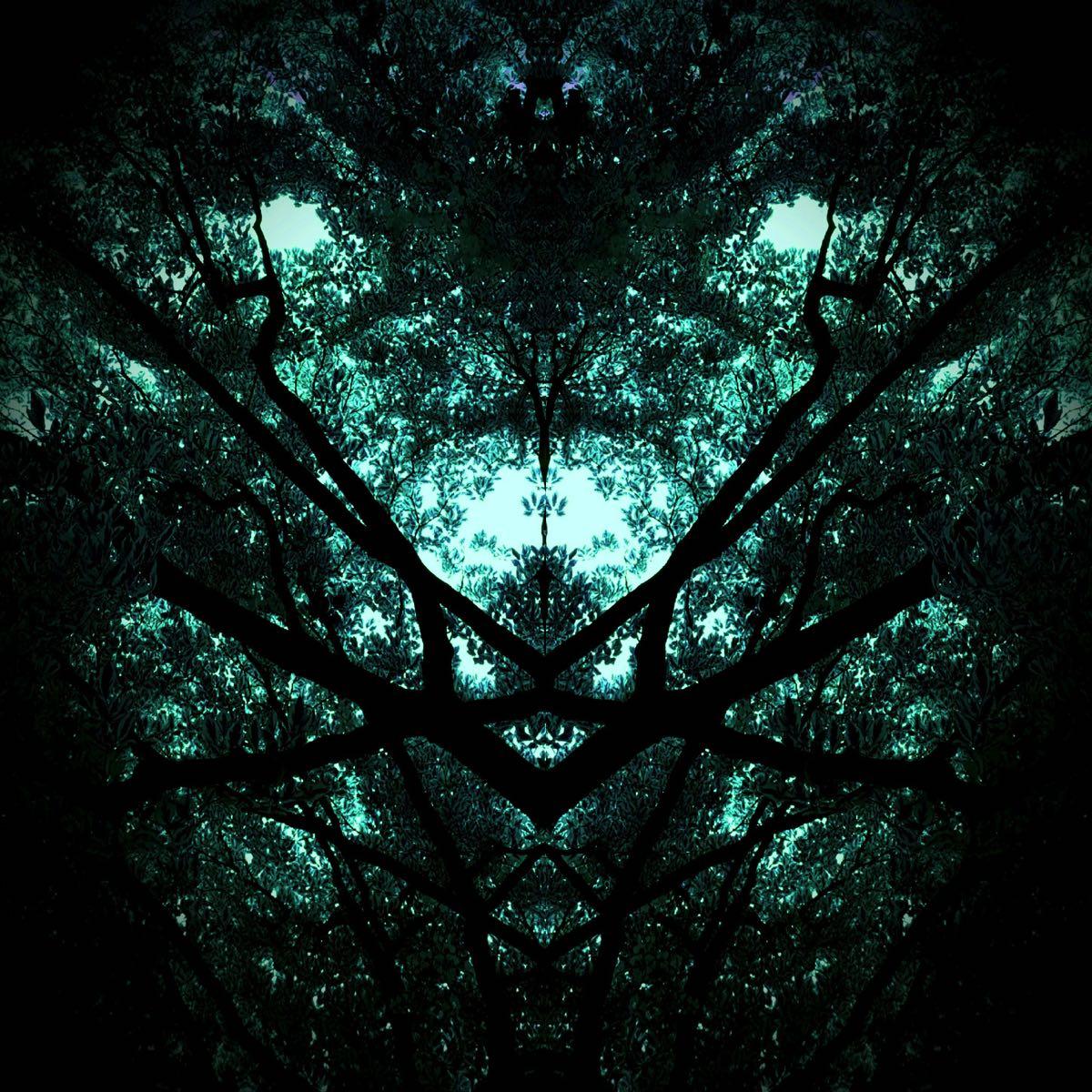 Subconscious - Tree Creatures #3 (40x40 cm) - Print on cotton paper 2020