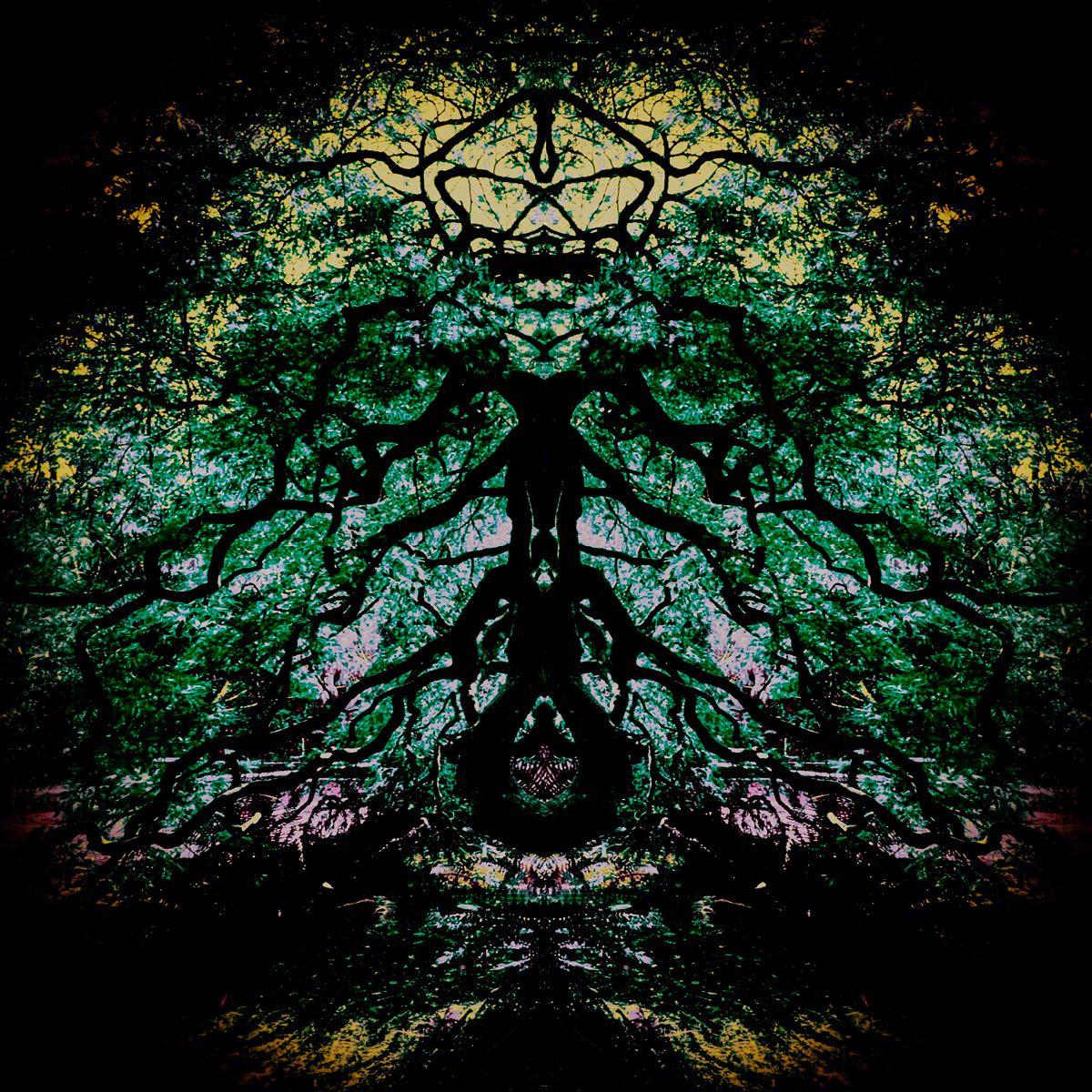 Subconscious - Tree Creatures #4 (40x40 cm) - Print on cotton paper 2020