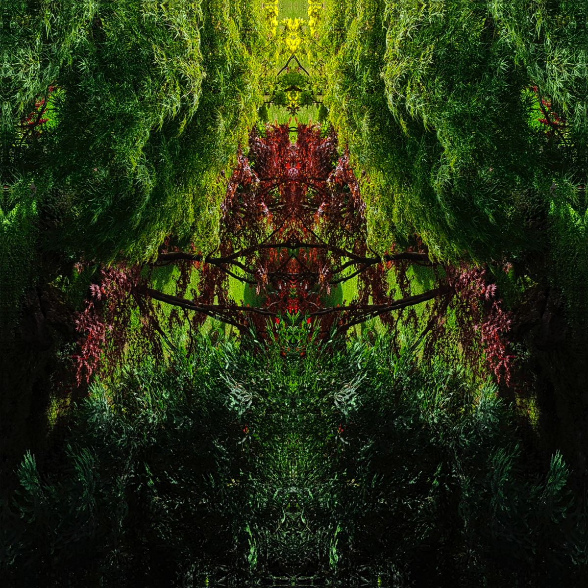 Subconscious - Tree Creatures #5 (40x40 cm) - Print on cotton paper 2020