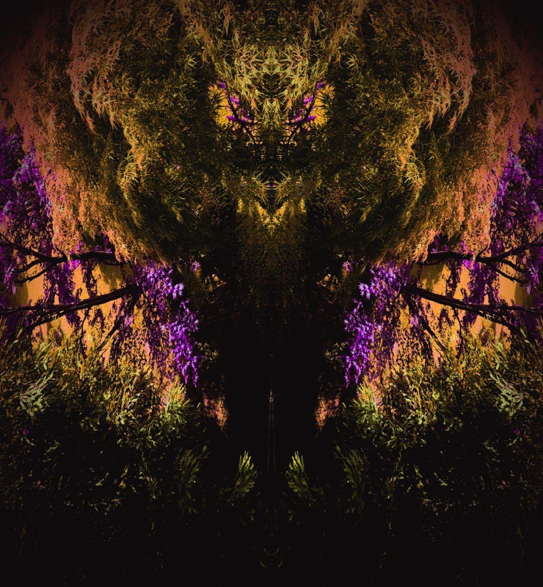 Subconscious - Tree Creatures #6 (40x40 cm) - Print on cotton paper 2020